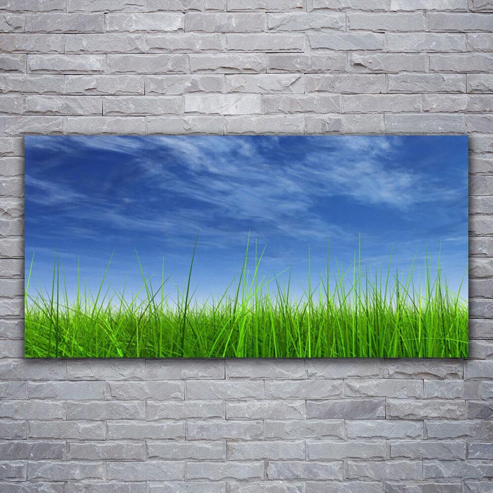 Photo sur toile Tableau Image Impression 120x60 Nature Ciel Herbe
