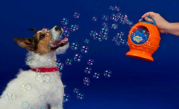 DOG bubbletastic bacon flavoured bubble machine or just bottle of bubbleS