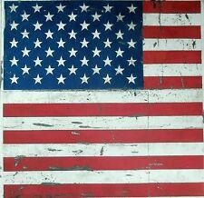 TEX EX ORIGINAL VINTAGE AMERICAN FLAG VELVET CUSHION PANEL STARS AND STRIPES