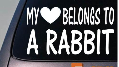 My heart belongs to a Rabbit sticker decal *D941*
