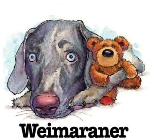 Weimaraner Fun Dog Breed Cartoon Short Long Sleeve White T Shirt M-3X