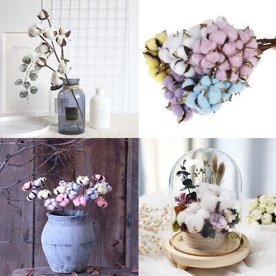 FLORISTEN PAKET 80 Teile Blumen Pflanzen,Zubehör,Restposten
