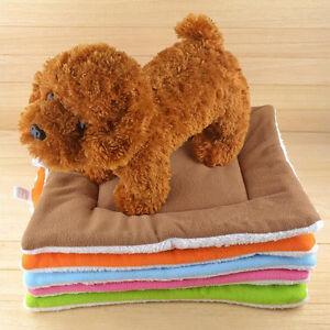 kleine mittlere gro e katze hund matte weiche decke schlaf warmes bett kissen ebay. Black Bedroom Furniture Sets. Home Design Ideas