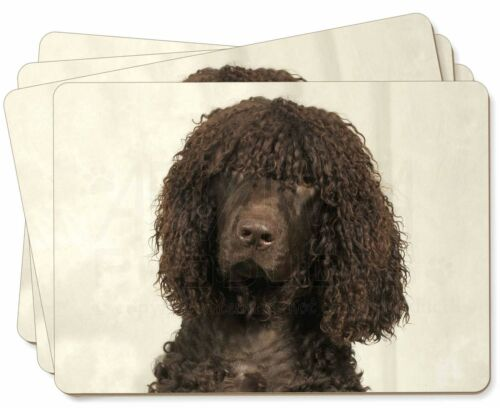 Irish Water Spaniel Dog Picture Placemats in Gift Box, ADIWSP