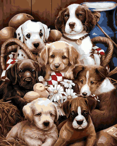 """16X20/"""" Paint By Number Kit DIY Acrylic Painting on Canvas Cute Dog Family SPA571"""