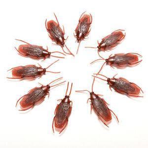 10-x-Joke-Cockroach-Bug-Funny-Prank-Novelty-Life-Like-Fake-Plastic-Toy-TrickT-nz