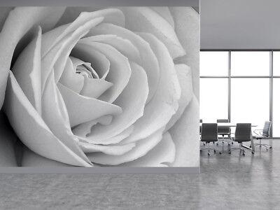 Carta Da Parati Rosa Bianca : Bella rosa bianca nera e bianca foto carta da parati murale parete
