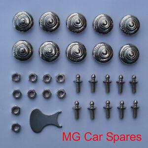 pair Tenax Fasteners Pegs 2 screw