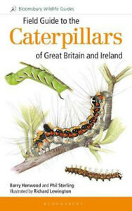 Field-Guide-to-the-Caterpillars-of-Great-Britain-and-Ireland-Dr-Phil-Sterling
