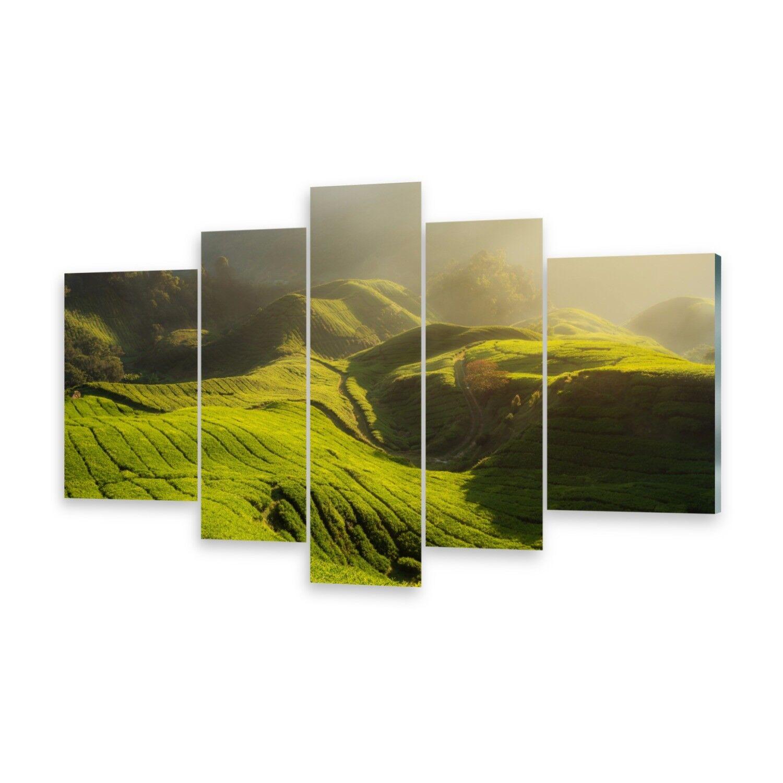 Mehrteilige Bilder Acrylglasbilder Wandbild Tee Plantage