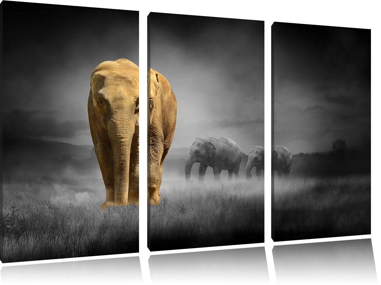Elefanti in Steppa Nero Bianco su 3-Teiler Quadro su Tel Decorazione Parete