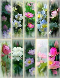 Lot Nat118 - 10 Marque-pages (thème : Lotus) Doux Et Doux