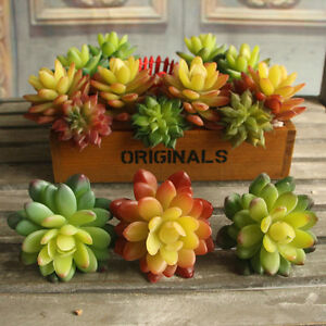 Artificial succulent real touch fake stone lotus flower for Real plants for home decor