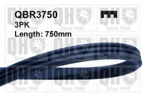QUINTON HAZELL QBR3750 AUXILIARY DRIVE BELT  RC486016P OE QUALITY