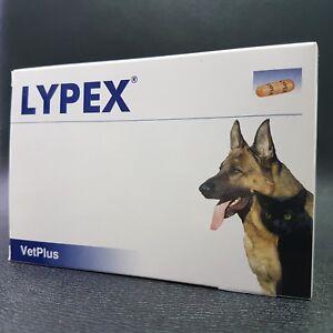 Lypex 60 Capsules d'enzymes pancréatiques pour chiens et chats