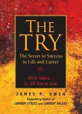 The Try: The Secret to Success in Life and Career, Owen, James P.