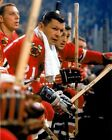 Stan Mikita Chicago Black Hawks Unsigned 8x10 Photo