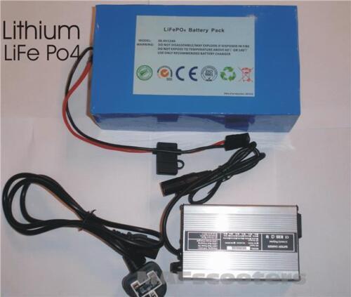 Litio Batteria Life Po4 36 Volt 12 Ah e Caricabatterie Elettrico e Motorino Ecc.