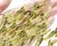 10 Stk Shrimp Angelhaken Garnelenfischköder Set scharf langlebig widerhaken Neu