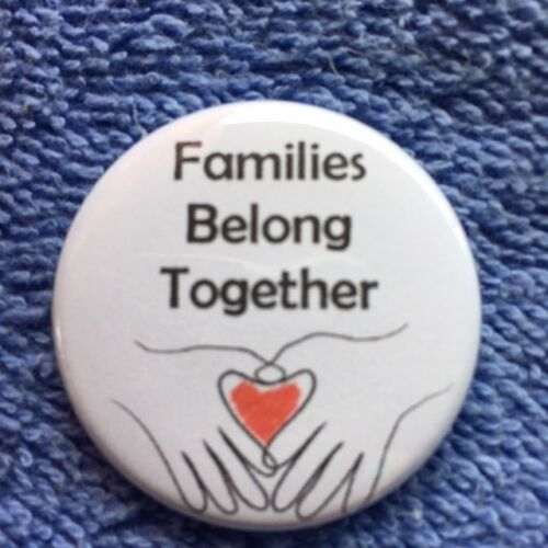 Families Belong Together 1 1//4 inch pinback button Ships Free
