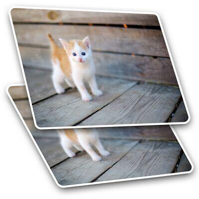 Cute Sleeping Ginger Cat Kitten Cool Gift #13113 2 x Vinyl Stickers 7.5cm
