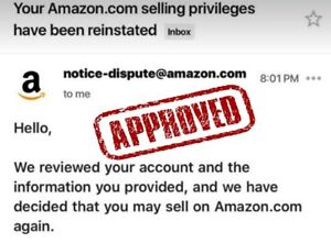 Amazon Account Suspended Appeal Letter Plan Of Action Poa Reinstate Suspension Ebay