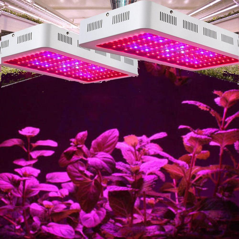 1000-2000W Hydroponics Led grow lamp  Full spectrum UV for indoor plants Medical