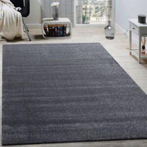 Plain Grey Rug New Modern Bedroom Floor Mat Small Extra