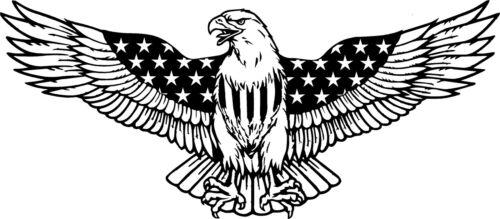 36 inch American Eagle Decal//sticker colour choice