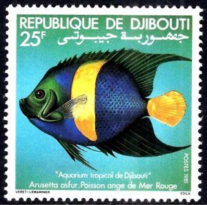 Angel-Fish-of-Red-Sea-1981-Africa-Djibuti-Somali-Coast-Mint-Never-Hinged-Stamp