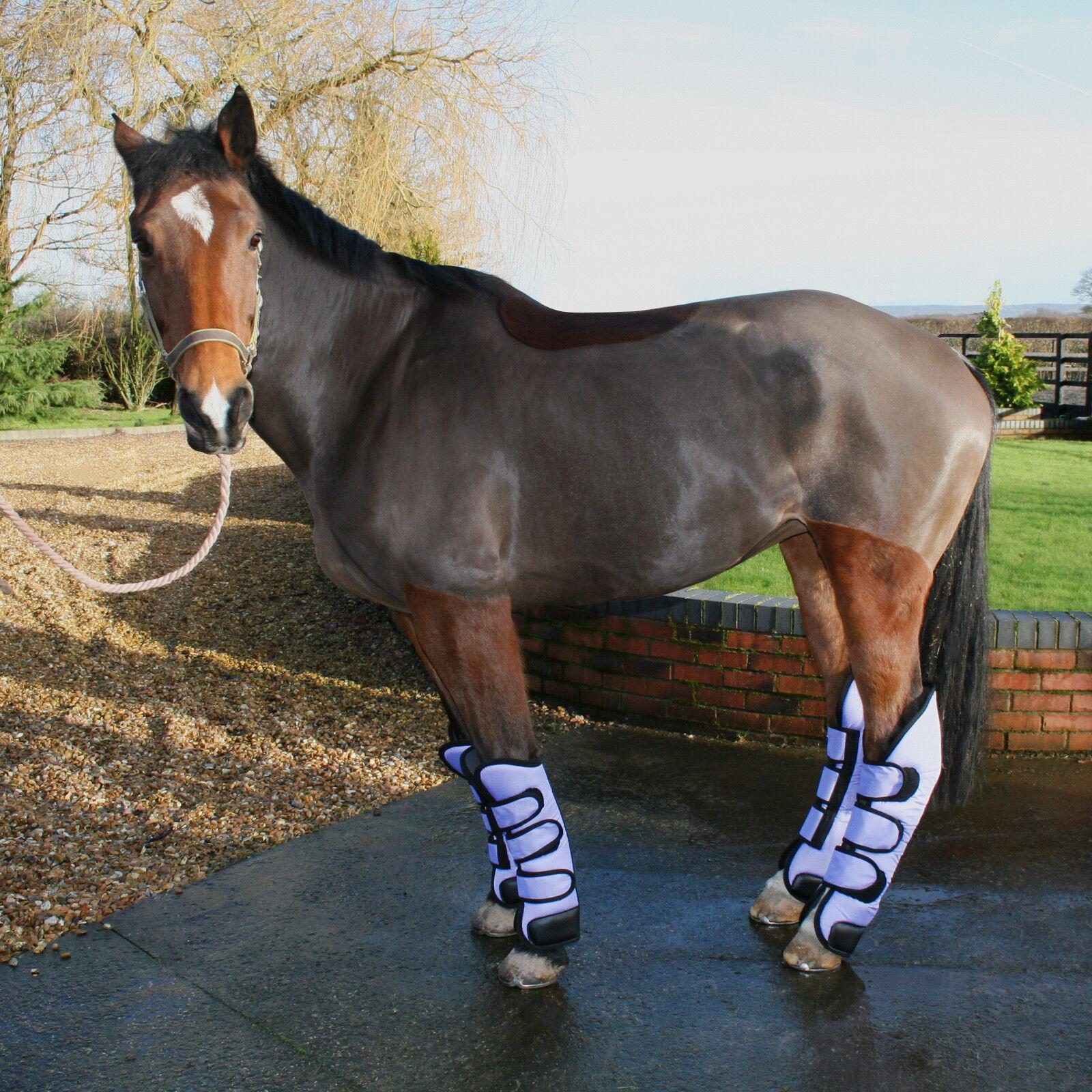 Horse Travel Boots Ripstop Nylon Fleece Lined Strong Velcro Straps - Full Set