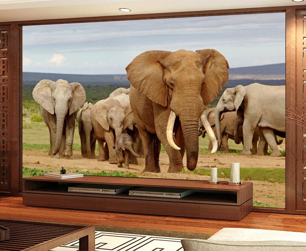 3D elefante 266 Parete Murale Foto Carta da parati immagine sfondo muro stampa