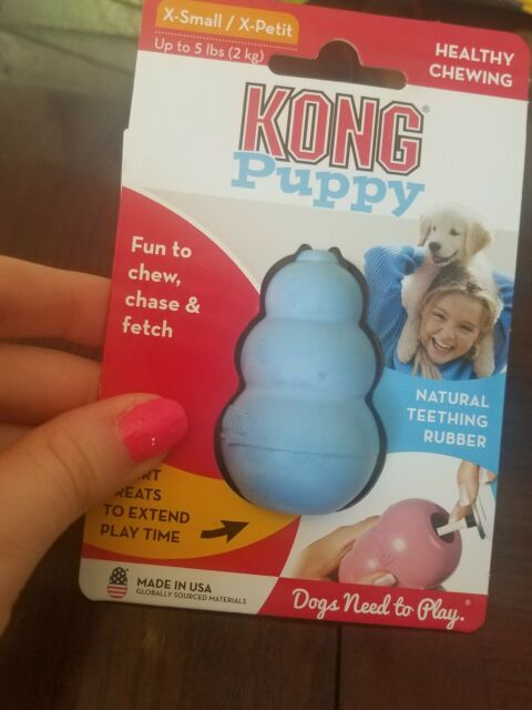Kong Classic Puppy- Extra Small Blue !