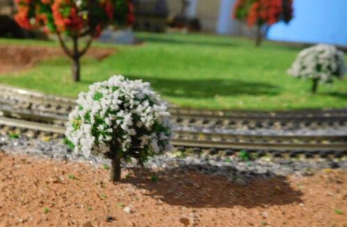 hauteur 30 mm 50 Blanc florissante arbres