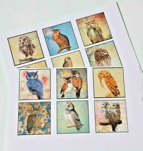 15-45 STICKERS SCRAPBOOKING CRAFT CARDMAKING EMBELLISHMENTS OWL BIRD OF PREY