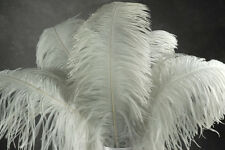 "2 WHITE Ostrich FEATHERS 23-28"" Full Wing PLUMES Bridal/Wedding/Centerpiece"