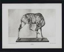 PHOTOGRAVURE CARL E. AKELEY SASSABY SOUTH AFRICA TAXIDERMY SCULPTURE