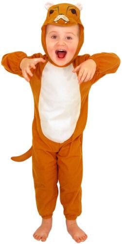 NUOVO Bambino Costume tema Kids fairy-tail 2-3yrs Vestito Halloween