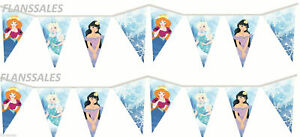 12-Feet-Frozen-ice-princess-bunting-banner-party-decoration-Birthday-Party