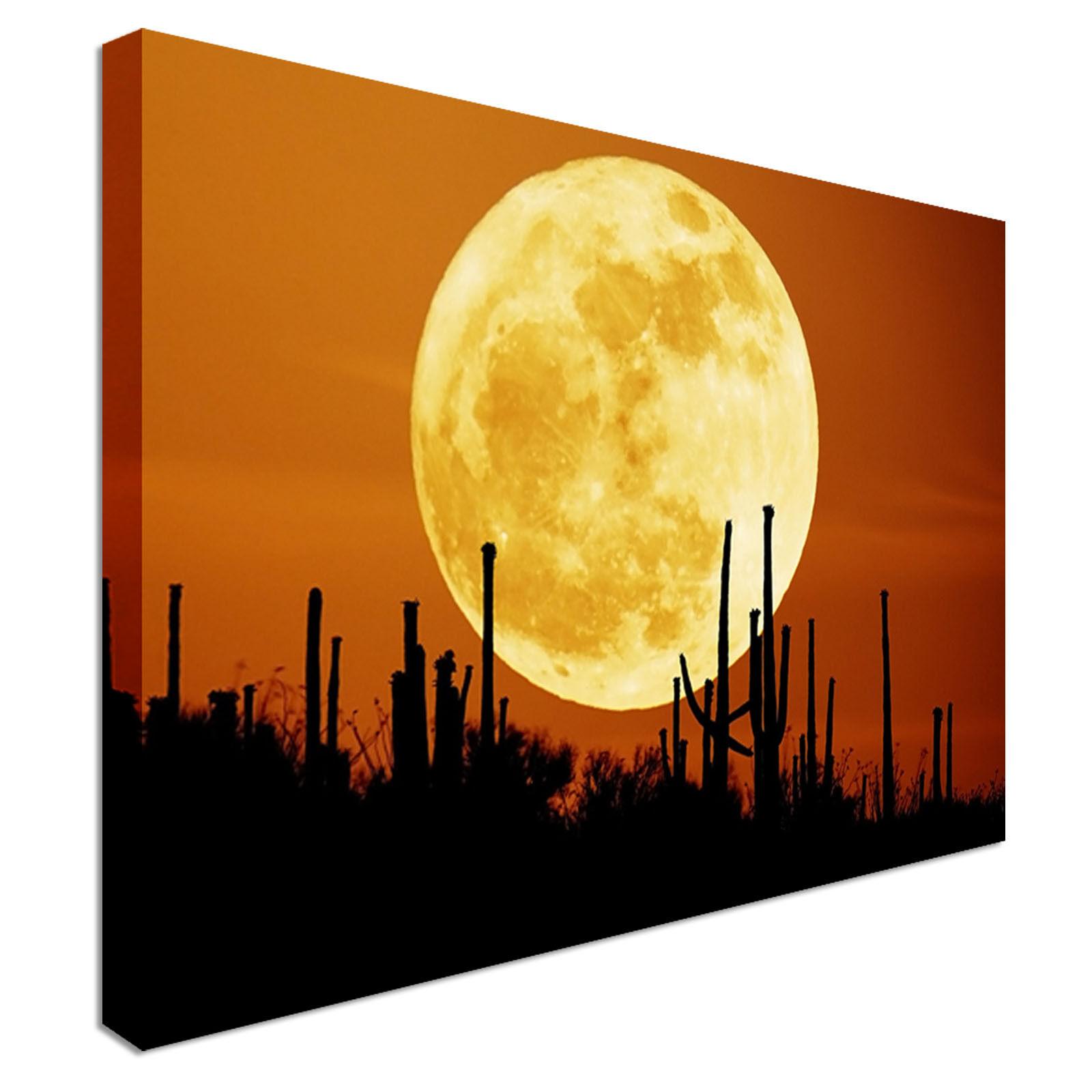 Large Moon Weiß Canvas Wall Art Print Large + Any Größe