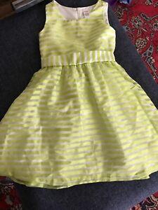 Metallic Stripe Gymboree Summer Dress
