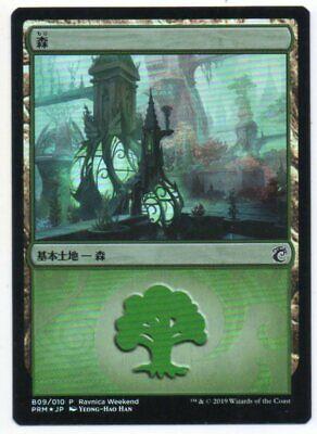 Azorius ***10x Island *** MINT Ravnica Allegiance Guild Kits MTG Magic Cards