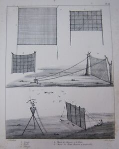 Engraving-Xixeme-Hauntings-and-Finger-Traps-Nets-Birds-Woodcock-Wood-Pigeons
