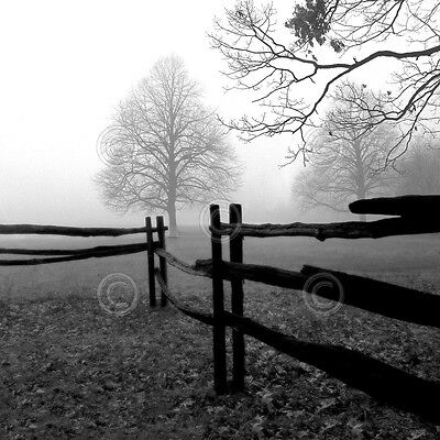 PHOTO ART PRINT Fence in the Mist by Harold Silverman 16x16 B//W Country Poster