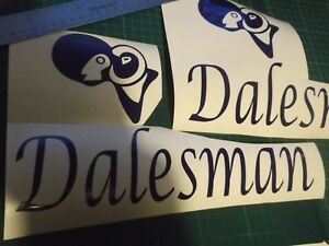 2 X ABI DALESMAN CARAVAN/MOTORHOME  DECALS STICKERS CHOICE OF COLOURS