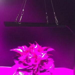 600W LED Grow Light Hydroponic Full Spectrum Veg Flower Panel Plant Lamp 75 LED