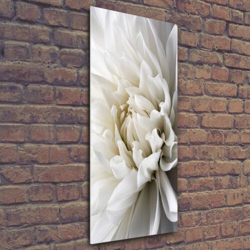 Wandbild Kunst-Druck auf Hart-Glas hochkant 50x125 Weiße Dahlie