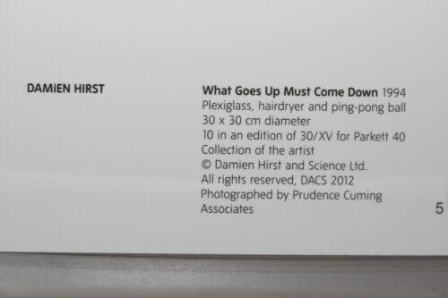 """Ausstellung /""""What Goes Up/"""" limitierte Kunst-Postkarte DAMIEN HIRST"""