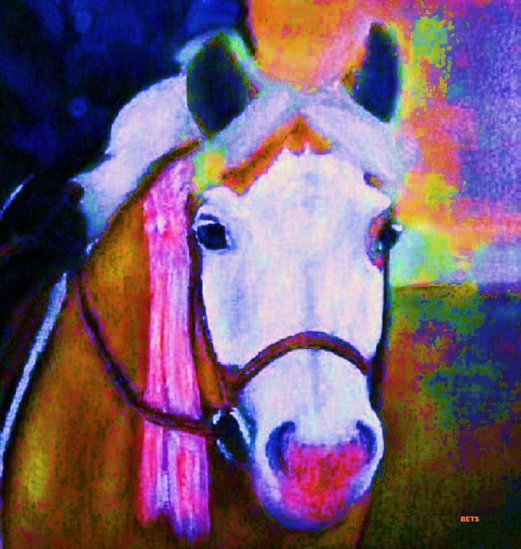 HORSE PRINT Giclee artist PONY Art FIRST RIBBON artist Giclee BETS 7 COLORS print Größe 14 X 16 04a115