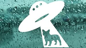 French-Bulldog-Ufo-Vinyl-Decal-Sticker-Car-Van-Bumper-Laptop-Window-Wall-Windows